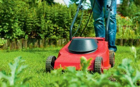 5 Инструментов для стрижки газона
