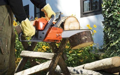 Что нужно для осенней уборки в саду. Выбор инструмента