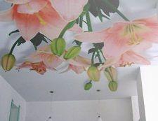 потолки натяжные художественные
