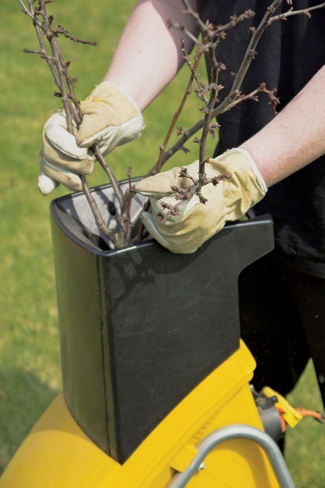 Обрезанные ветви деревьев и кустарников можно обработать измельчителем и использовать для мульчирования