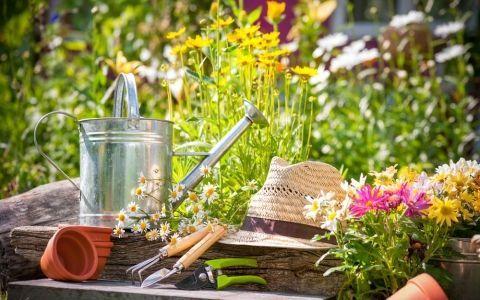 осень,календарь работ,зима,инвентарь,инструменты