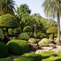 Как создать уникальный ландшафтный дизайн для вашего сада