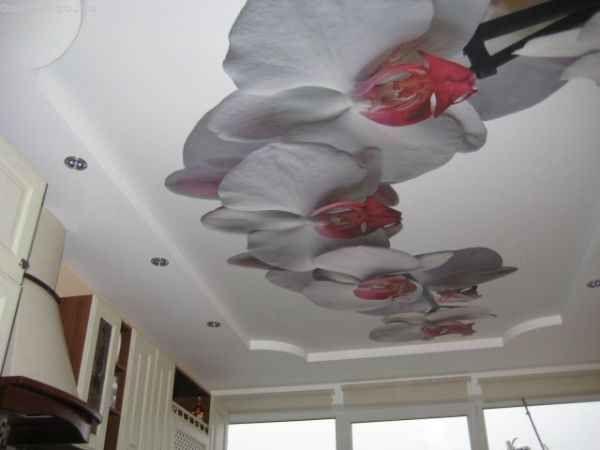 Натяжные потолки в зале с фото печать на тканевом полотне