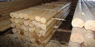 Оцилиндрованное дерево: критерии выбора и цена 1 м3 различных пород