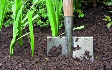 почва,участок,исследование участка