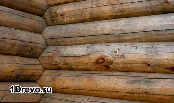 Положительные моменты в изготовлении сруба из кедра и лиственницы
