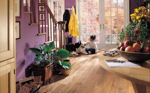 Прихожая в приватном доме: оборудование и мебель