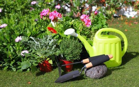 садовый инструмент,садовые инструменты,ручной инструмент,работа в саду