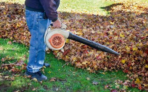 садовый пылесос,садовые пылесос,культиватор,мотоблок,уборка,осенняя уборка,осенние работы,техника