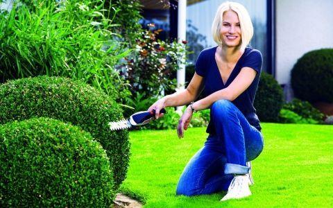 Топ-10 аккумуляторных инструментов для работы в саду (фото)