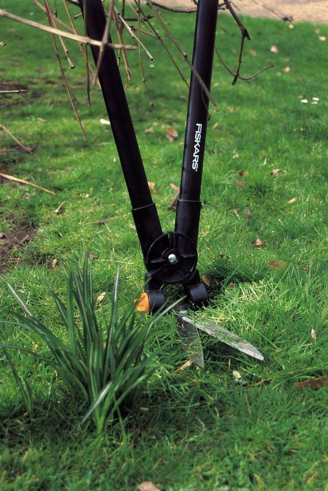 Ножницы для травы заменят триммер лишь на небольших участках