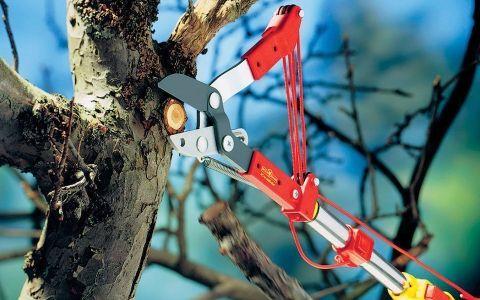 Выбираем садовые инструменты со сменными насадками (фото)